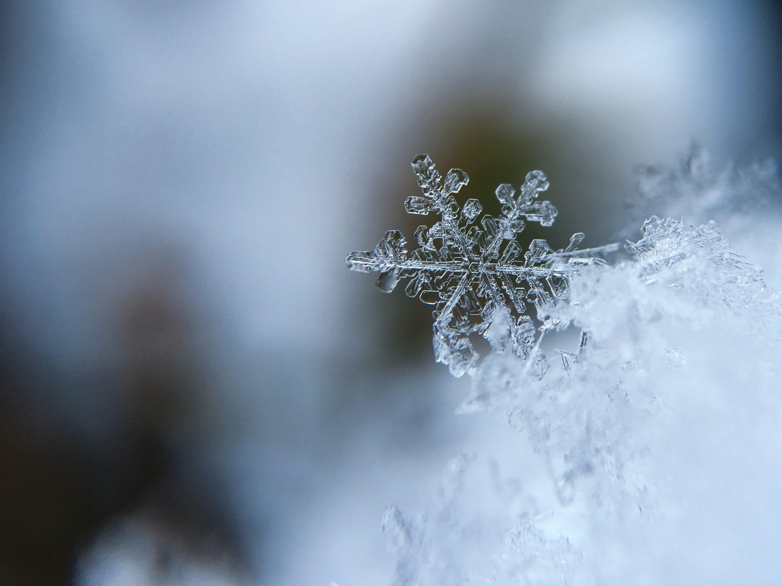 eviter les maladies hivernales